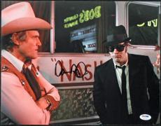 Dan Aykroyd Blues Brothers Signed 11X14 Photo PSA/DNA #T50712