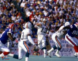 "Dan Marino Miami Dolphins Autographed 16"" x 20"" Horizontal vs. Buffalo Bills Photograph"