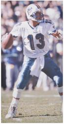 Dan Marino Miami Dolphins Autographed 62'' x 31'' Passing Canvas - Mounted Memories  - Mounted Memories