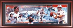 Dan Marino Miami Dolphins Framed Unsigned Panoramic Photograph - Mounted Memories