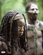 Danai Gurira The Walking Dead Signed 11X14 Photo PSA/DNA #U23656