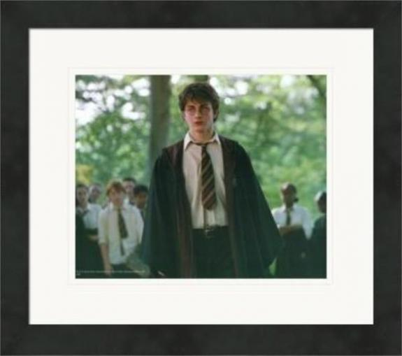 Daniel Radcliffe 8x10 photo (Harry Potter) #14 Matted & Framed