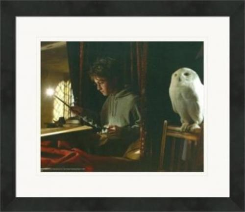 Daniel Radcliffe 8x10 photo (Harry Potter with Magic Wand) #1 Wizard Matted & Framed