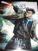 Daniel Radcliffe Signed Autograph 11x14 Photo Harry Potter 7 Coa M