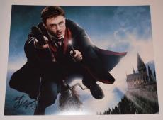 Daniel Radcliffe Signed Autographed 11x14 Photo HARRY POTTER COA VD