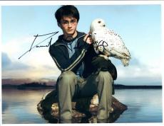 Daniel Radcliffe Signed Autographed 8x10 Photo Harry Potter COA VD