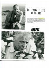 David Attenborough The Private Life Of Plants Original Movie Press Still Photo