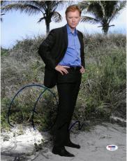David Caruso Signed CSI MIAMI Autographed 11x14 Photo (PSA/DNA) #K66393