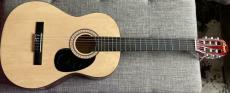 Debbie Harry Blondie Signed Autograph Full Size Natural Wood Acoustic Guitar Coa