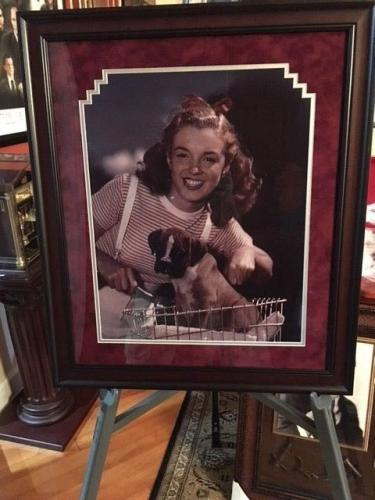 """Deluxe Framed, Marilyn Monroe, 16x20 Photo, (Early Marilyn) """"Bicycle w/ Puppy"""