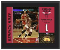 "Chicago Bulls Derrick Rose 10"" x 13"" Sublimated Plaque - - Mounted Memories"