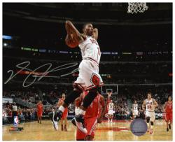 "Chicago Bulls Derrick Rose Autographed 8"" x 10"" Photo - Mounted Memories"