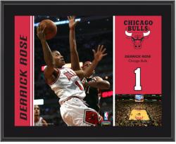 "Chicago Bulls Derrick Rose 10"" x 13"" Sublimated Plaque - Mounted Memories"