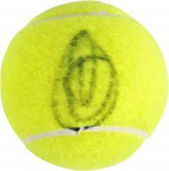 Novak Djokovic Autographed US Open Logo Tennis Ball