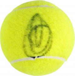 Novak Djokovic Autographed US Open Logo Tennis Ball