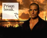 Dominic Purcell Autographed Signed Prison Break Photo UACC RD AFTAL