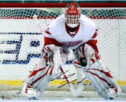 "Dominik Hasek Detroit Red Wings Autographed 16"" x 20"" Photograph with HOF 2014 Inscription"