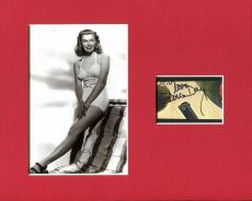 Doris Day Man Who Knew Too Much Pillow Talk Signed Autograph Photo Display