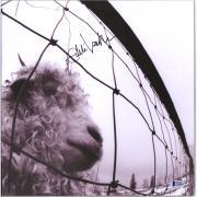 Eddie Vedder Pearl Jam Autographed VS. and Vitalogy Album Cover - BAS