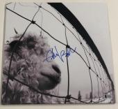 Eddie Vedder Signed Pearl Jam Vs. Album Vinyl Lp Autograph Proof Beckett Coa