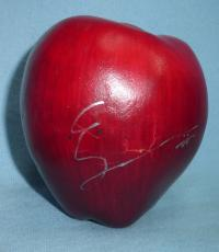 Elizabeth Reaser Signed Twilight Apple PSA/DNA COA Breaking Dawn New Moon 2 Esme