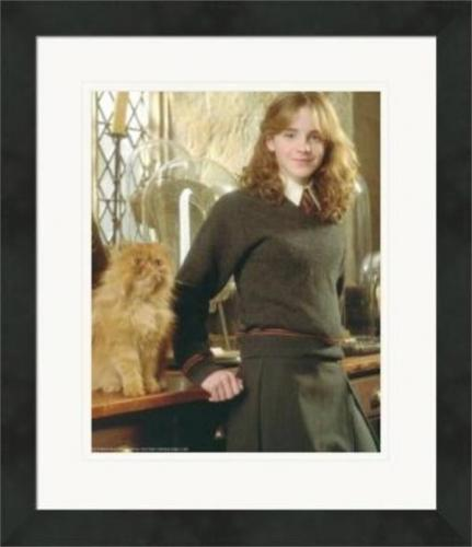 Emma Watson 8x10 photo (Harry Potter, Hermione Granger) #3 Matted & Framed