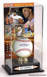 Jose Fernandez Miami Marlins 2013 National League Rookie of the Year Award Gold Glove with Image Display Case - Mounted Memories