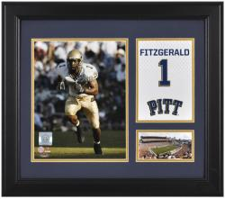 """Larry Fitzgerald Pittsburgh Panthers Framed Campus Legend 15"""" x 17"""" Collage"""