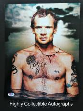 Flea Signed 11x14 Photo Autograph Psa Dna Coa Red Hot Chili Peppers