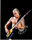 Flea Signed - Autographed Red Hot Chili Peppers Guitarist 8x10 inch Photo - Guaranteed to pass PSA or JSA