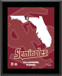 FLORIDA STATE SEMINOLES (STATE) 10x13 PLAQUE (SUBL) - Mounted Memories