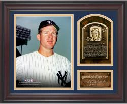 """Whitey Ford Baseball Hall of Fame Framed 15"""" x 17"""" Collage with Facsimile Signature"""