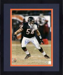 Framed Brian Urlacher Chicago Bears Autographed 16'' x 20'' Windy City Photograph