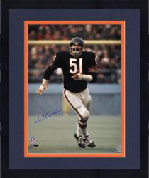 "Framed Dick Butkus Chicago Bears Autographed 16"" x 20"" Action Photograph"