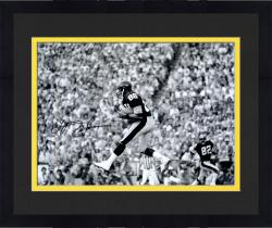 Framed Lynn Swann Pittsburgh Steelers Autographed 16'' x 20'' Black & White Catch Photograph