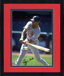 """Framed Ozzie Smith St. Louis Cardinals Autographed 8"""" x 10"""" Swing at Ball Photograph"""
