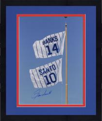 Framed Ron Santo Chicago Cubs Autographed 16'' x 20'' Retired Number Flag Photograph