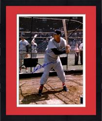 "Framed Ted Williams Boston Red Sox Autographed 16"" x 20"" Swinging In Cage Photograph"