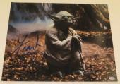 Frank Oz Signed 16x20 Photo Yoda Star Wars Proof Photo Authentic Autograph Psa A