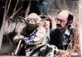 FRANK OZ SIGNED AUTOGRAPH STAR WARS CONTROLLING YODA 11x14 PHOTO PSA/DNA PROOF