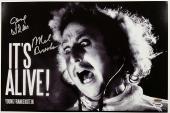 GENE WILDER + MEL BROOKS Signed 12x18 Photo YOUNG FRANKENSTEIN w/ PSA/DNA COA