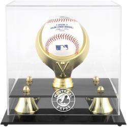 Golden Classic (bh-4 Gold Ring) (expos) Logo Case