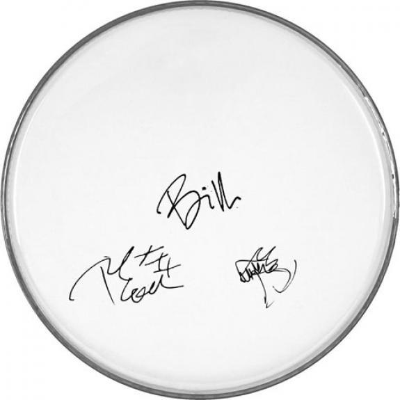 Green Day Facsimile Signature   Clear Drumhead Billie Joe Armstrong Plus