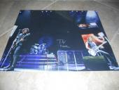 Green Day Tre Cool HUGE Signed Autographed 16x20 Photo PSA Guaranteed