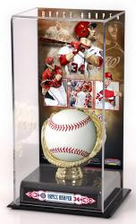 Bryce Harper Washington Nationals Gold Glove Baseball Display Case - Mounted Memories