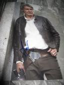 HARRISON FORD SIGNED AUTOGRAPH 11x14 STAR WARS THE FORCE AWAKENS PHOTO COA X1