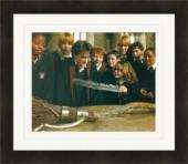 Harry Potter 8x10 photo Daniel Radcliffe Emma Watson Image #13 Matted & Framed