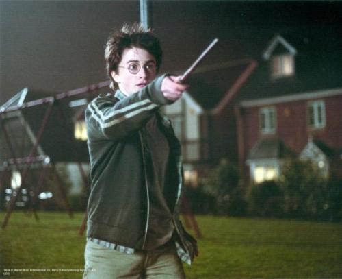 Harry Potter 8x10 photo Daniel Radcliffe Image #7