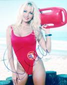 Hot Sexy Pamela Anderson Signed 8x10 Photo Autograph Baywatch Classic Coa