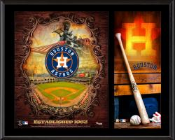 "Houston Astros Sublimated 12"" x 15"" Team Logo Plaque"